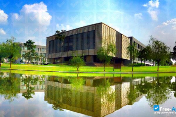 Մագիստրոսական ծրագիր՝ Չինաստանի Տոնջիի համալսարանում