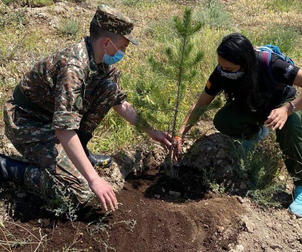 Օտարերկրացի ապագա բժիշկները 100+33 ծառ են տնկել «Եռաբլուր» զինվորական պանթեոնում